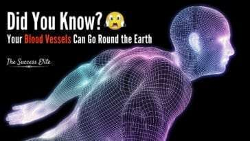 10 Amazing Things You Probably Didn't Know About The Human Body