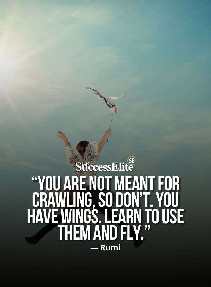 Quotes To Fly Higher